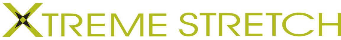 dickies-xtreme-stretch-logo.jpg